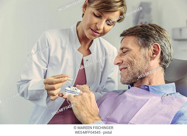 Dentist explaining dental bridge on a tooth model to patient