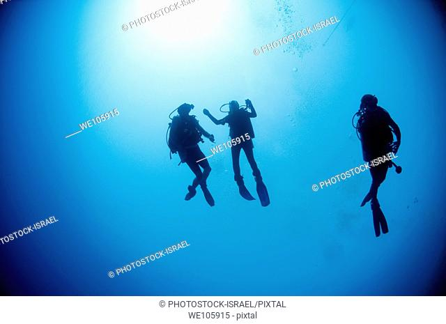 Cuba divers in the water photographed at Ras Mohammed National Park, Red Sea, Sinai, Egypt
