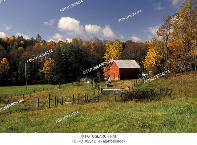 red barn, Blue Ridge, farm, VA, Virginia, A red barn on a farm along the Blue Ridge Parkway in autumn in Virginia