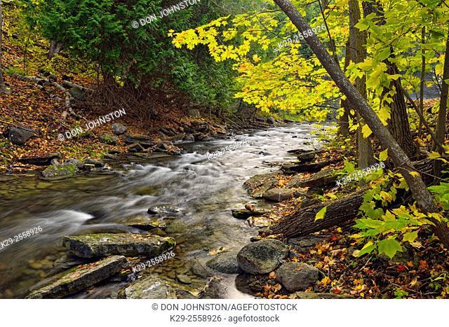 Kagawong River in autumn, Kagawong, Manitoulin Island, Ontario, Canada