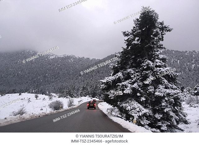 The drive up to Arachova ski resort. Kellaria, Parnassos, Arachova, Viotia, Central Greece, Europe