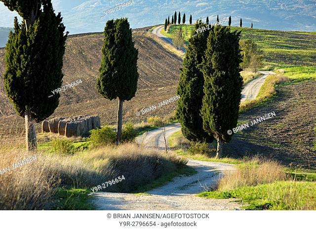 Winding farm track leading to county villa near Pienza, Tuscany, Italy