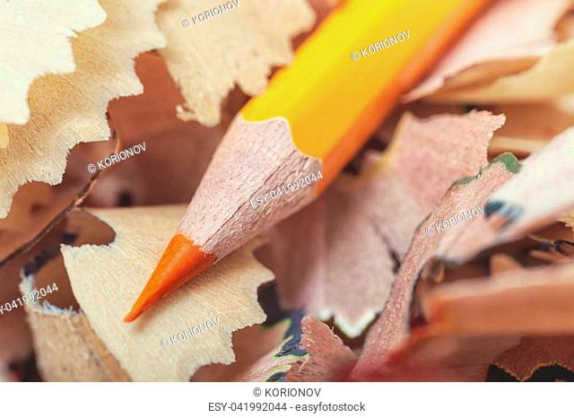 One orange pencil and shavings close-up