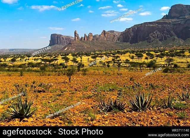 Savannenlandschaft der Hawzien Ebene mit dem Gheralta Bergmassiv, Hawzien, Tigray, Äthiopien / Savanna landscape of the Hawzien Plain with the Gheralta Mountain...