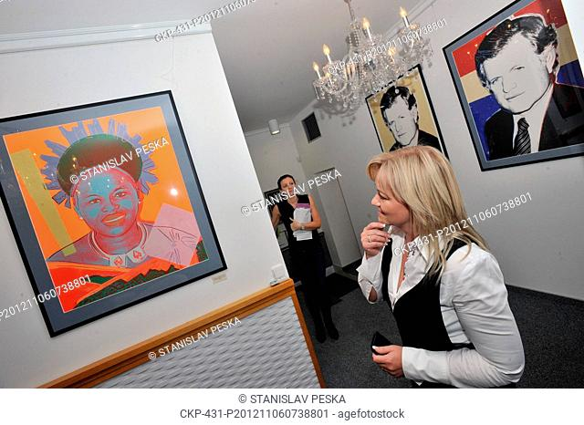 An exhibition of 14 diamond dust paintings by pop-art legend Andy Warhol was open in a diamond jewellery shop Diamonds International Corporation in Prague's...