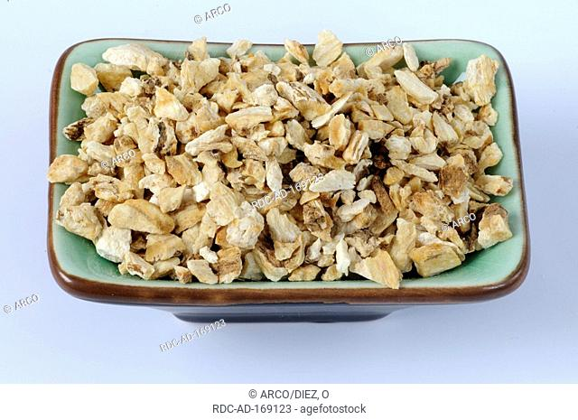 Chinese Angelica, Angelicae sinensis Radix, cut out, object