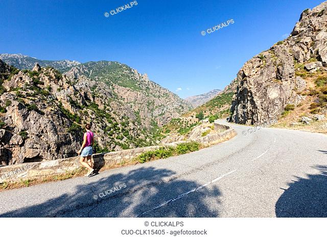 The road between forests and rocky mountains from the town of Corte to the village of Evisa, Corsica, France, Europe