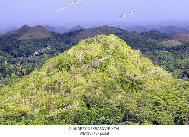 The Chocolate Hills in Carmen, island Bohol, Philippines, Southeast Asia