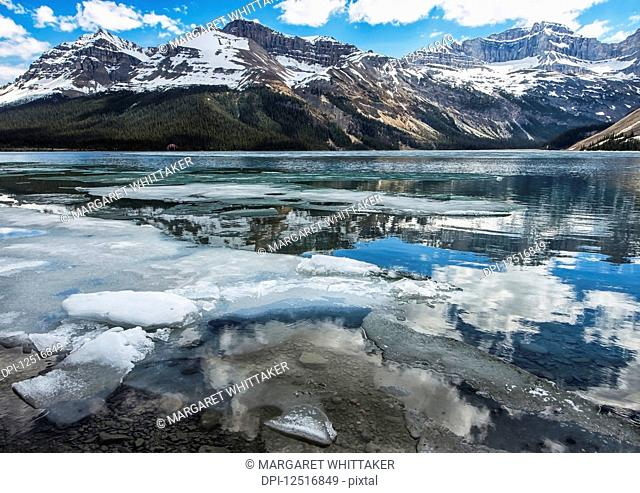 Pieces of ice broken along the shoreline of Bow Lake with the Rocky Mountains reflected in the water, Banff National Park; Alberta, Canada
