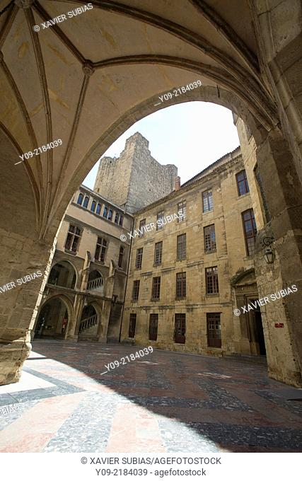 Town hall, Narbonne, Aude department, Languedoc-Roussillon, France
