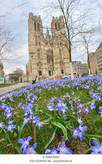 Cathedral of St. Michael and St. Gudula, Brussels with blue flowers