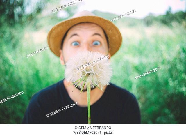 Man in nature starring at blowball, close-up