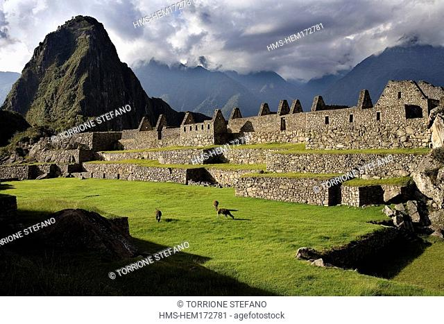 Peru, Cuzco Department, the Incan Sacred Valley, Machu Picchu, Incan archeological site listed as World Heritage by UNESCO, ruins of the former inca city