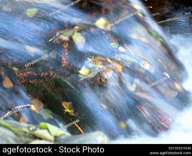 Autumn leaves in a fast flowing stream at Aira Force waterfall in Lake District