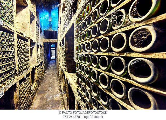 """""""""""The cathedral"""" room at the Marqués de Riscal winery. The city of wine. Elciego. Rioja alavesa wine route. Alava. Basque country. Spain"