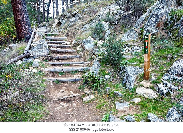 Track in the Hornillo. Sierra de Guadarrama. Madrid. Spain
