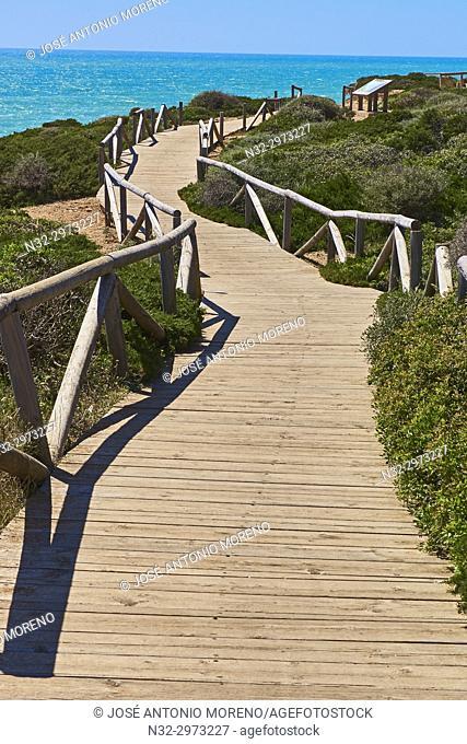 Conil de la Frontera. Cabo Roche, Costa de la Luz. White Town, Cadiz Province. Andalucia. Spain