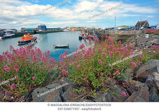 Howth harbor in summer Ireland