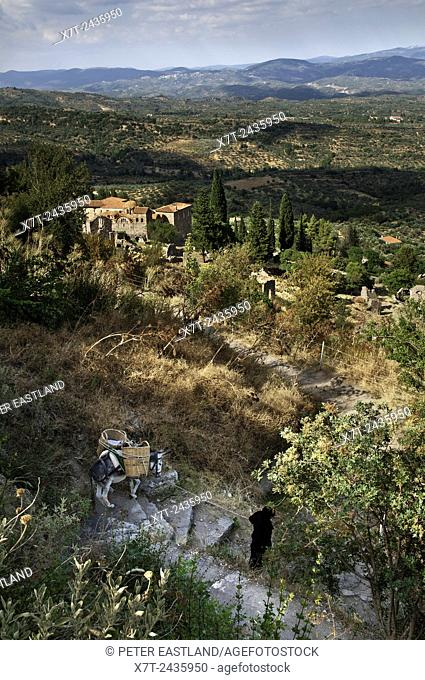 A nun from Pantanassa nunery leads a donkey down to the church of the Mitropolis to collect supplies. On the hill of Mystra, Lakonia, Peloponnese, Greece