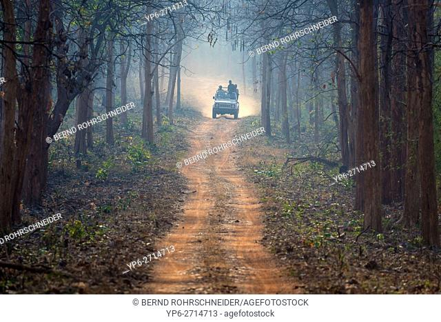 people in off-road vehicle driving on dusty forest track in Tadoba National Park, Maharashtra, India