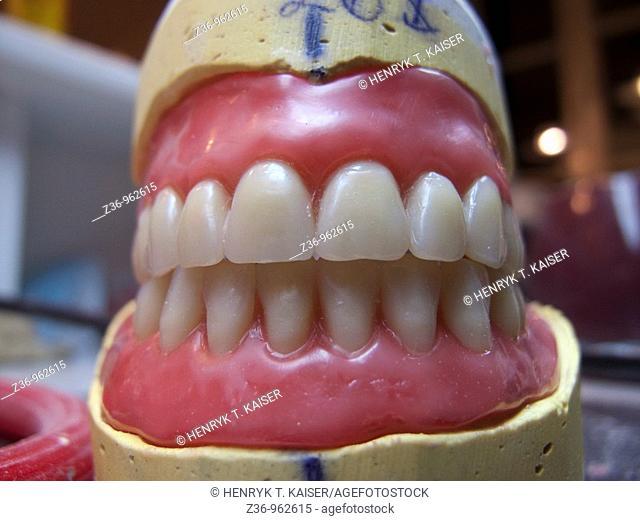 Dentistry, model