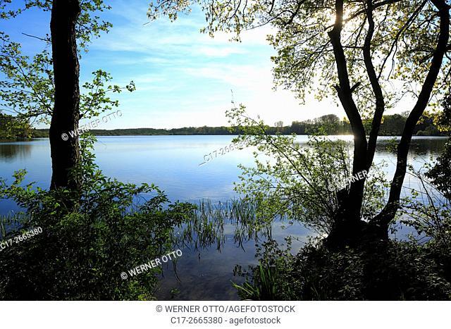 Germany, Nettetal, Maas-Schwalm-Nette Nature Park, Schwalm-Nette Nature Park, Lower Rhine, Rhineland, North Rhine-Westphalia, NRW, Nettetal-Hinsbeck
