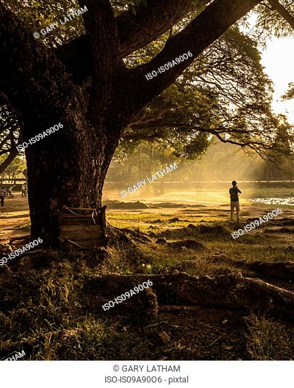 Tourist photographing by tree in Angkor Wat, Siem Reap, Cambodia