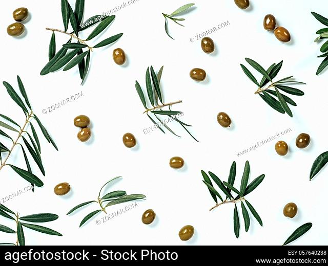 Beautiful pattern with green olives and olives tree leaves and branches on white background. Olive tree fruits and branches as pattern, top view or flat lay
