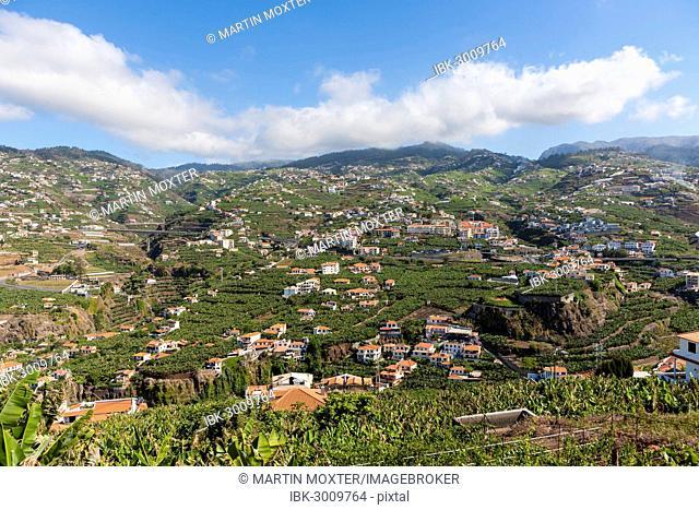 Townscape of Câmara de Lobos, Funchal, Porto de Camara de Lobos, Ilha da Madeira, Portugal