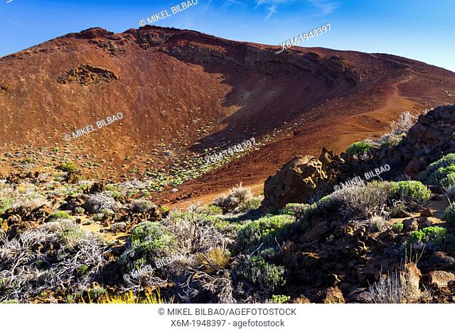 Montaña Mostaza (Mustard Mountain) (2100 m). Teide National Park. Tenerife, Canary Islands, Atlantic Ocean, Spain