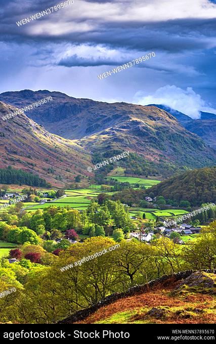 The stunning bluebells of Buttermere carpet the hill sides in the Lake District National park. England Featuring: Rosthwaite evening light, Cumbria