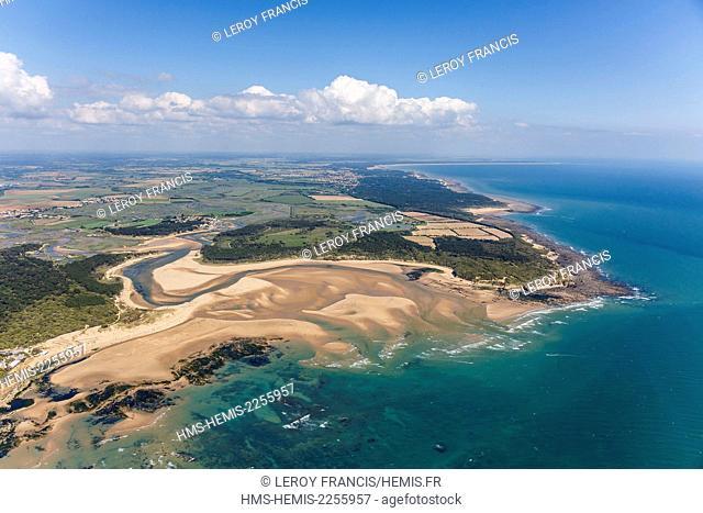 France, Vendee, Talmont Saint Hilaire, le Havre du Payre, Veillon beach and la Guittiere marshes (aerial view)