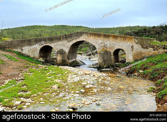 Old bridge over the Carbonero stream. Cañaveral. Cáceres province. Extremadura. Spain