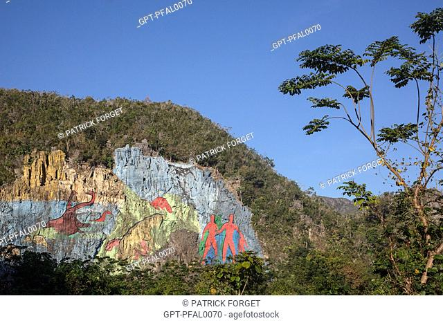 MURAL OF EVOLUTION, PREHISTORIC WALL (MURAL DE LA PREHISTORIA) COMMISSIONED BY FIDEL CASTRO IN 1961, PAINTING ON ASLOPE OF A MOGOTE (MOUNTAINOUS LIMESTONE...