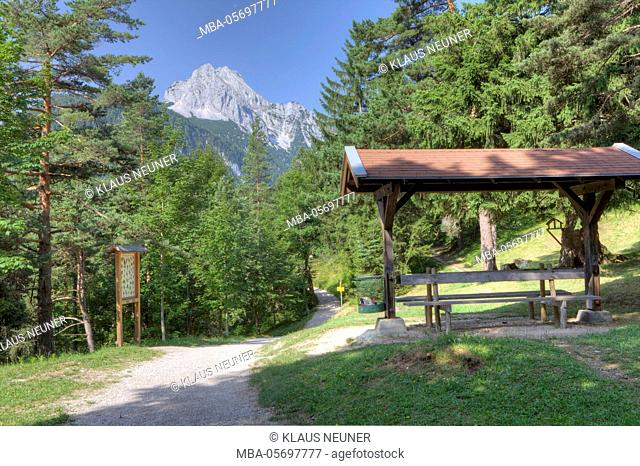 Educational forest trail in Mittenwald summer, Bavaria, Upper Bavaria