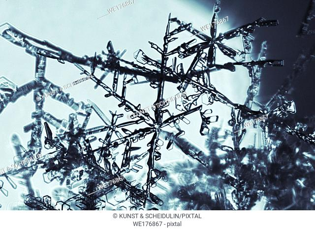 Close up of snowflakes on a cold winter day