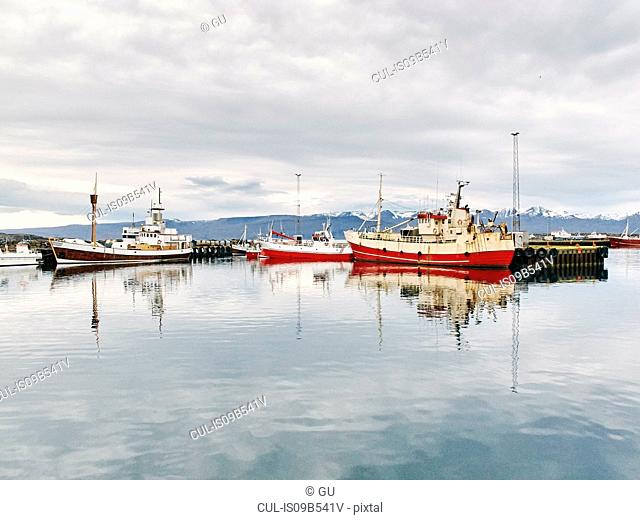 Fishing boats in harbour, Husavik, Iceland