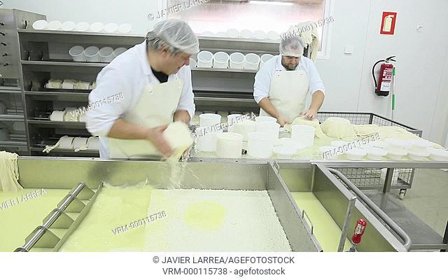 Manual production of sheep cheese, Introduction into molds and pressed back, Gomiztegi Baserria, Arantzazu, Oñati, Gipuzkoa, Basque Country, Spain