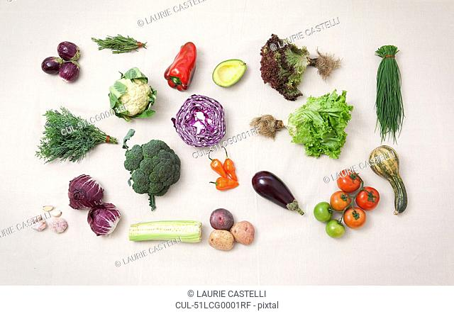 Vegetables arranged on counter