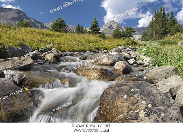 A waterfall flows through an alpine meadow, Skyline Trail, Jasper National Park, Alberta, Canada