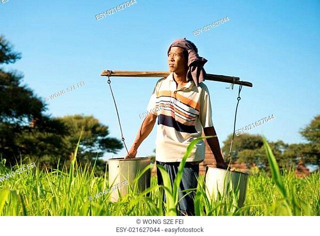 Traditional Burmese farmer