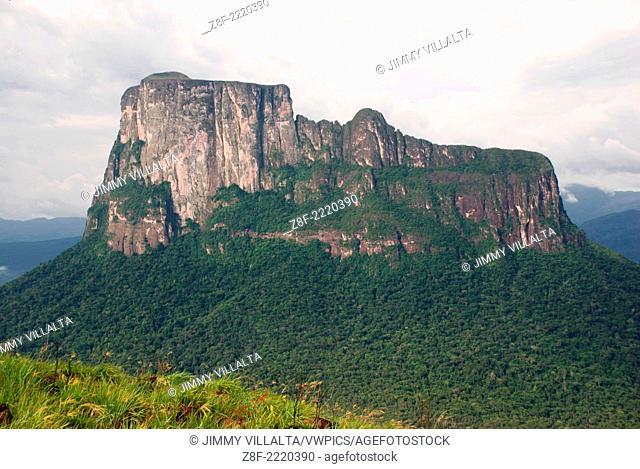 Autana Tepui, Amazonas state, Venezuela