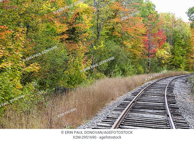 Autumn foliage along the old Maine Central Railroad in Carroll, New Hampshire USA