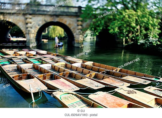 Punts moored on river, Oxford, UK