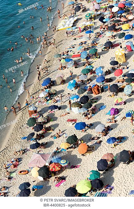 Many people with colorful sunshades at Tropea Beach, Calabria, Italy