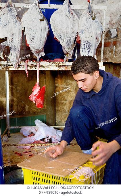 Tunez: Sfax Medina  Market in Avenue des Martyrs