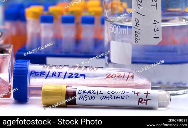 Several vials positive for covid-19 infection of the new variant in the south africa, conceptual image