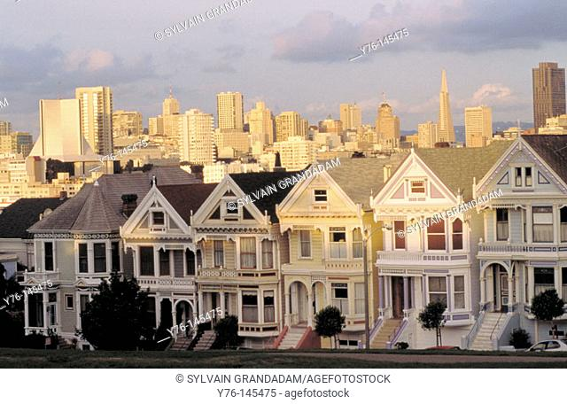 Alamo Square Victorian Houses. San Francisco