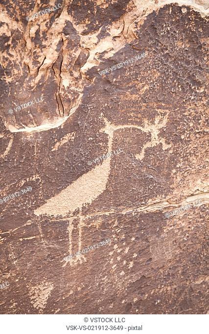 USA, Arizona, Petrified Forest National Park, Close-up of rock art