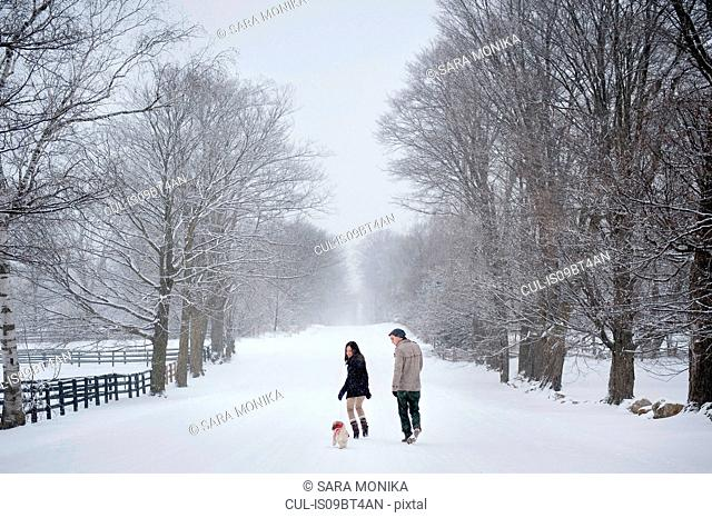 Young couple walking dog in snow covered forest, rear view, Ontario, Canada